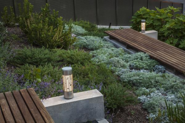 Planting and lighting in the stepped garden (photo: Steven Evans Photography)