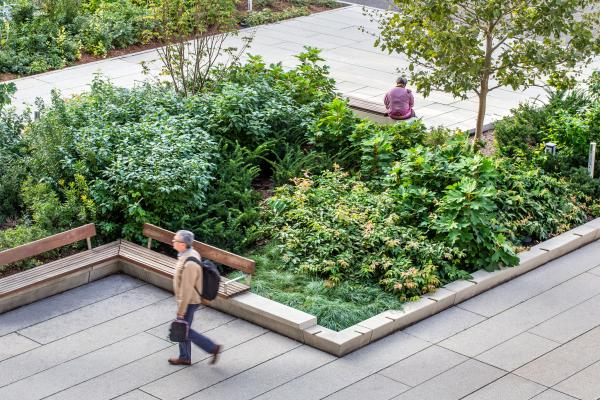 Planting separates intimate seating areas (photo: Steven Evans Photography)
