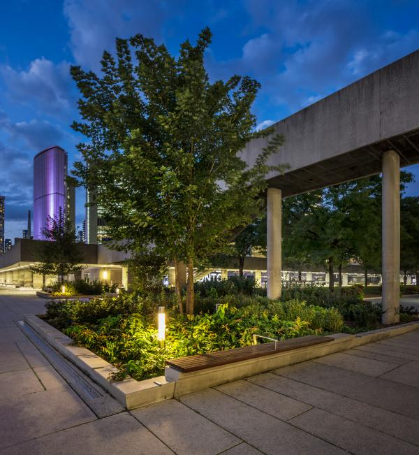 Custom bollards throughout the plantings (photo: Steven Evans Photography)