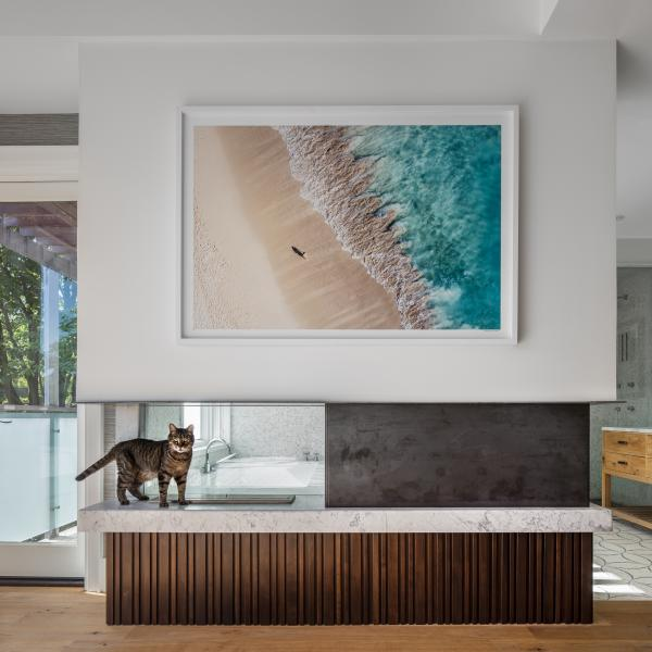Master bedroom view to bath with noble cat guardian (photo: Steven Evans Photography)