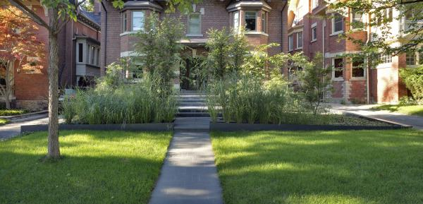 View of the garden from the street (photo: Peter Legris Photography)