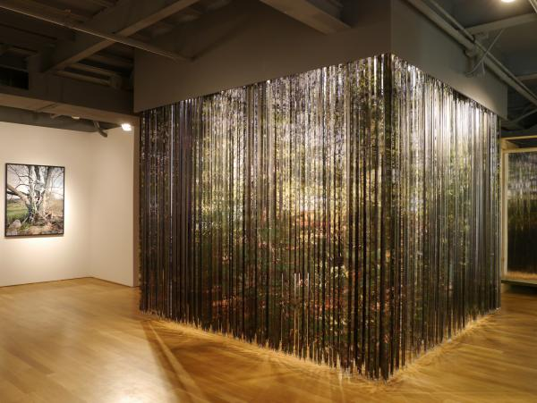 View of the lenticular curtain from outside (photo: Chris Pommer/PLANT, Alison Steele)