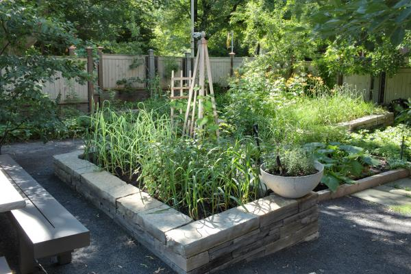The raised beds (photo: Peter Legris Photography)