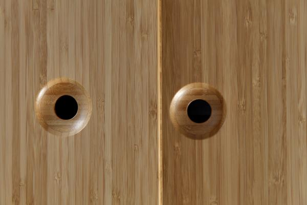 Detail of the sliding doors (photo: Peter Legris Photography)