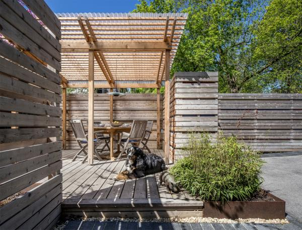 Entry from the paved yard (photo: Steven Evans Photography)